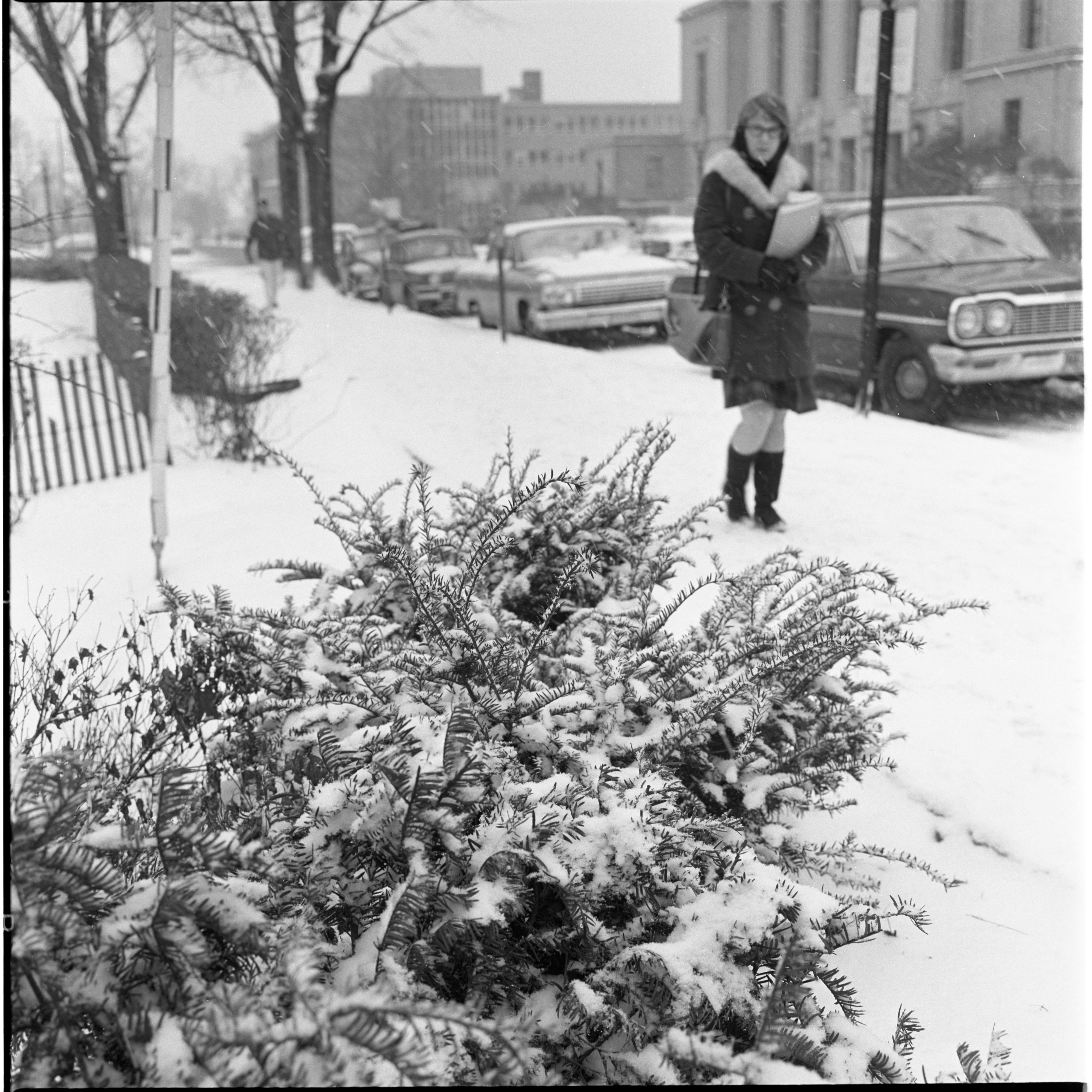 Snowfall On The University of Michigan Central Campus, January 1966 image