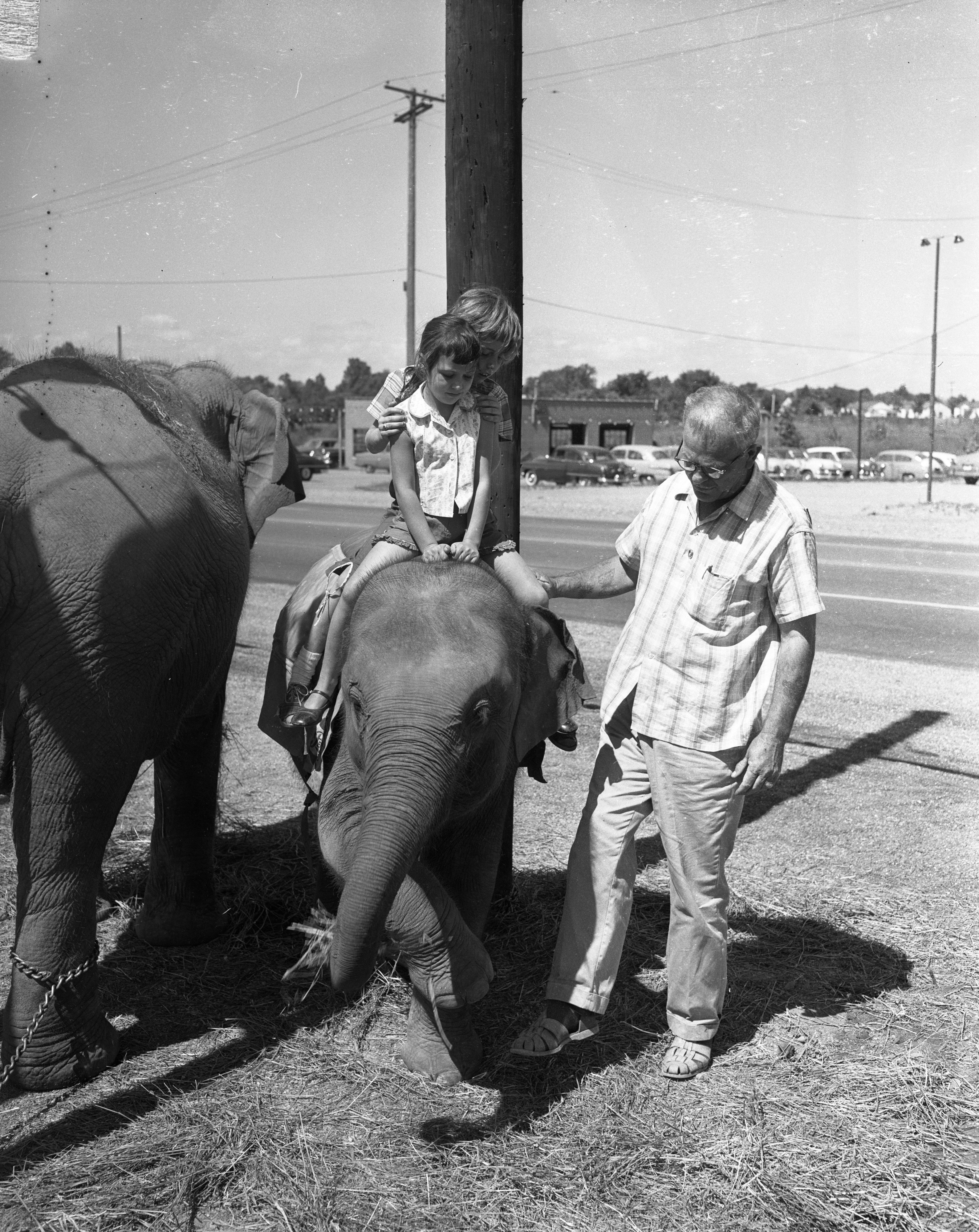 Becky Brooks and Angela Cavosie on elephant at Vincent Chevrolet, August 1957 image
