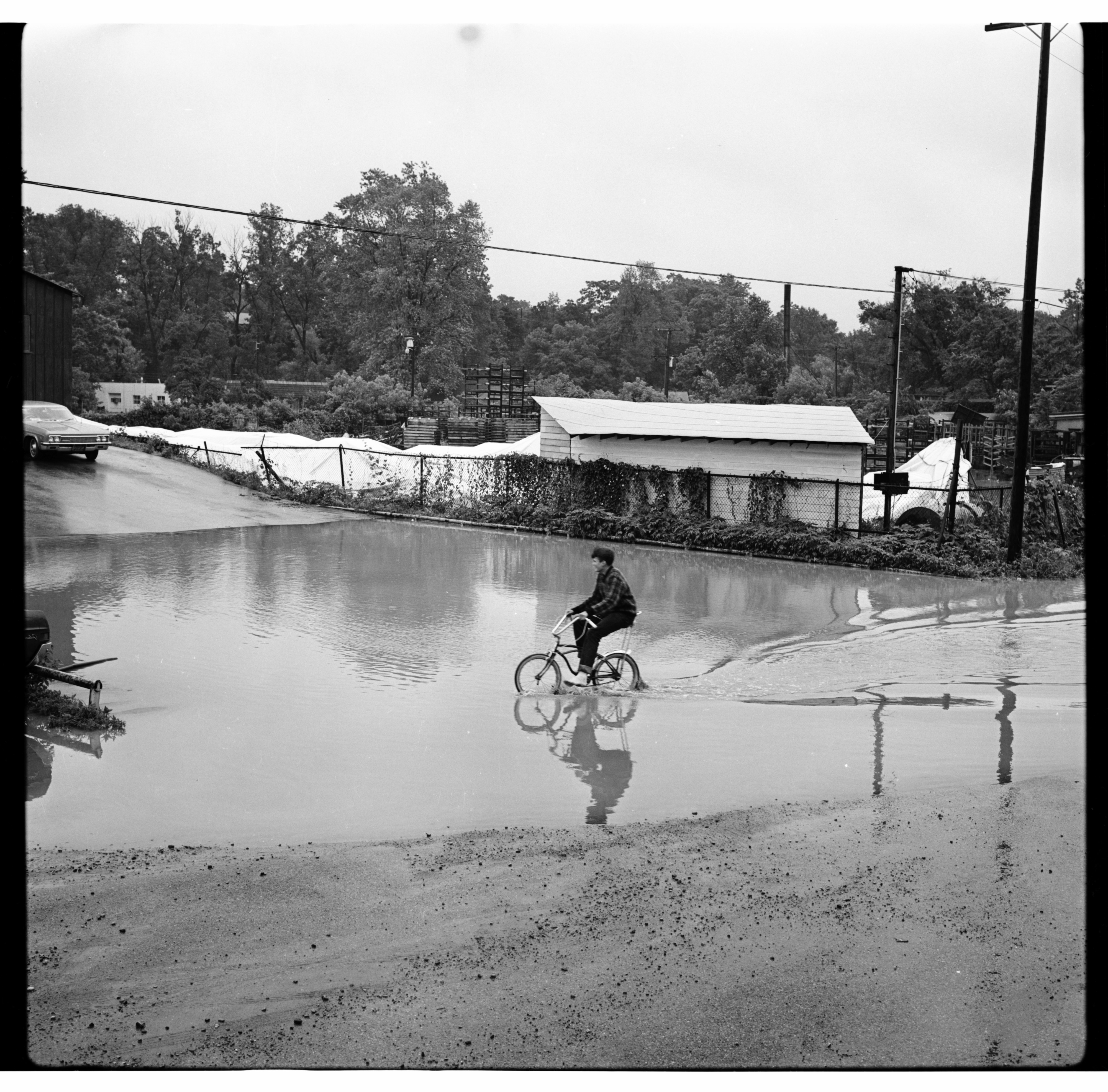 Boy Riding Bike through Floodwaters, June 1968 Flood image