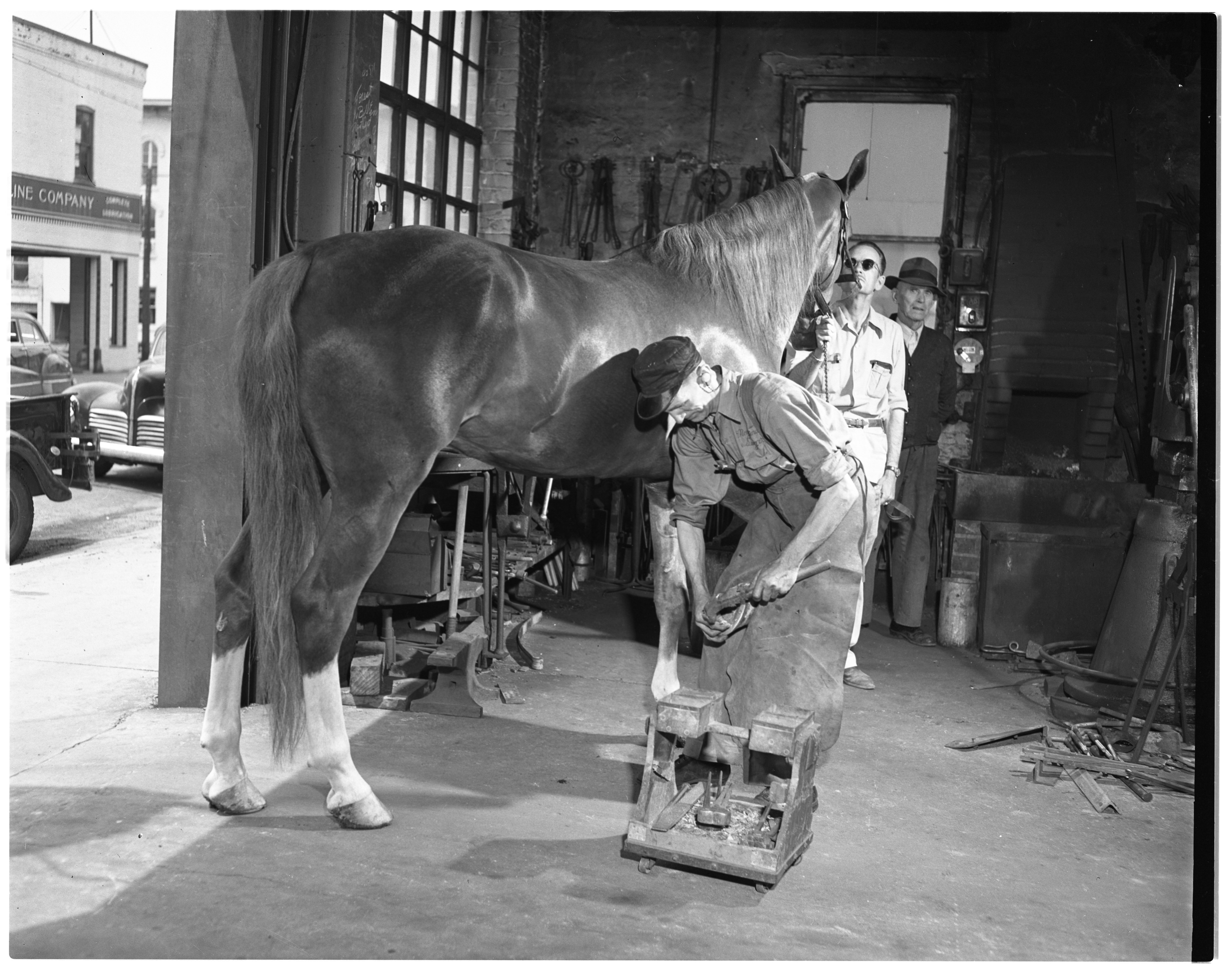 Fred Seeger, Blacksmith, Shoeing A Horse, May 1949 image