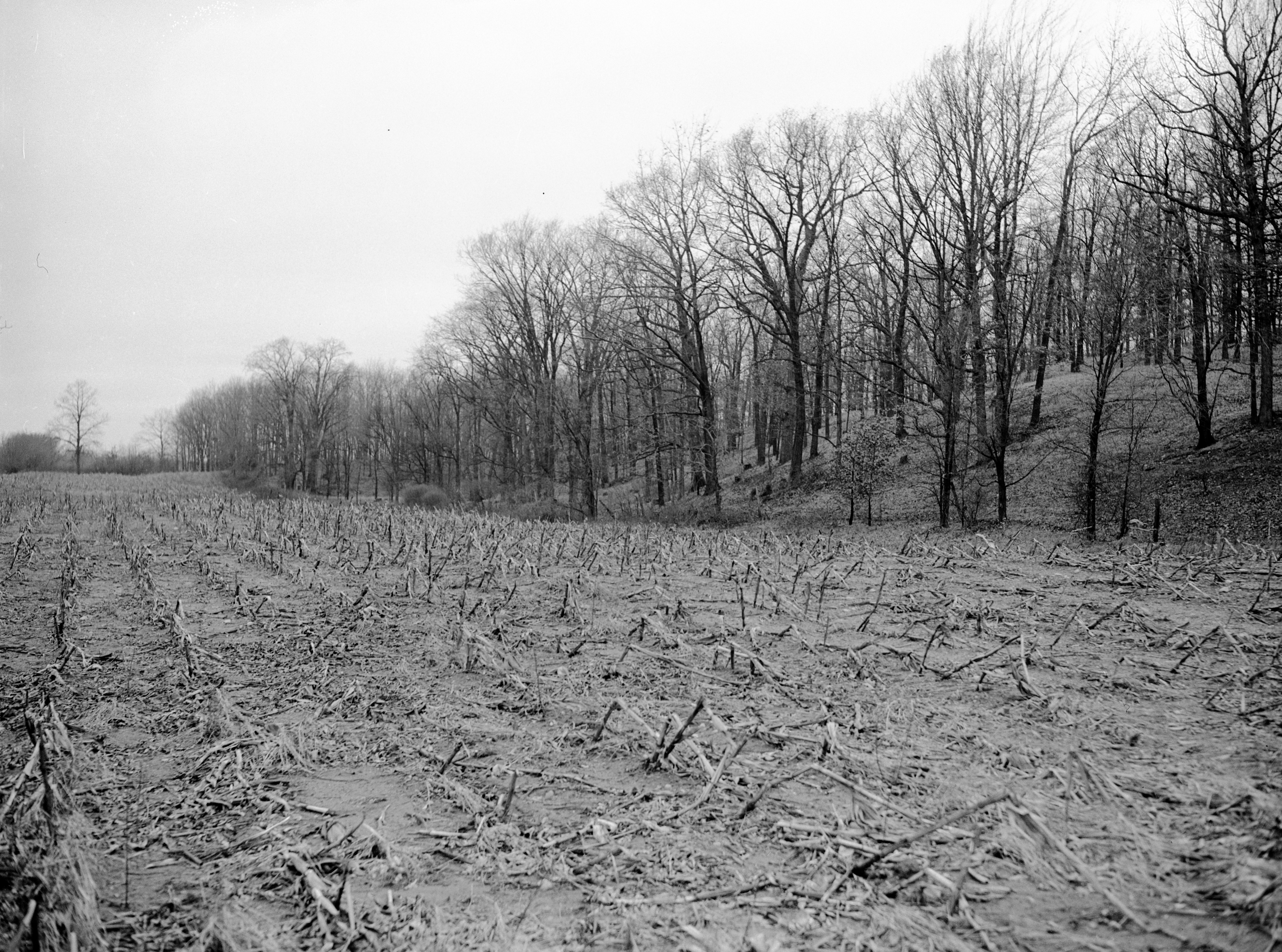 Oscar Buss Farm Where Burned Body of Orville Wurster Was Found, March 1942 image