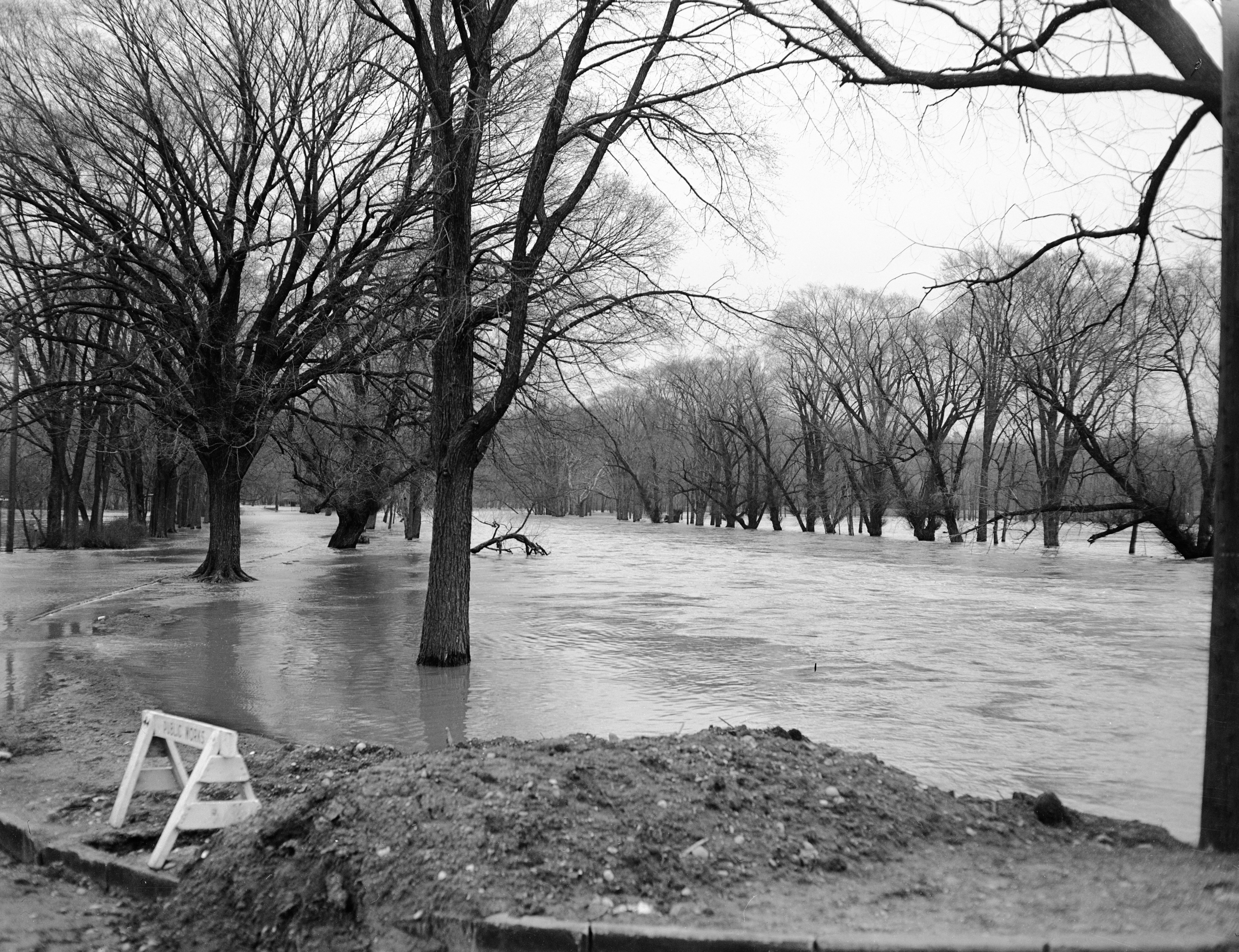 Island Drive Flooded By Overflowing Huron River, April 1950 image