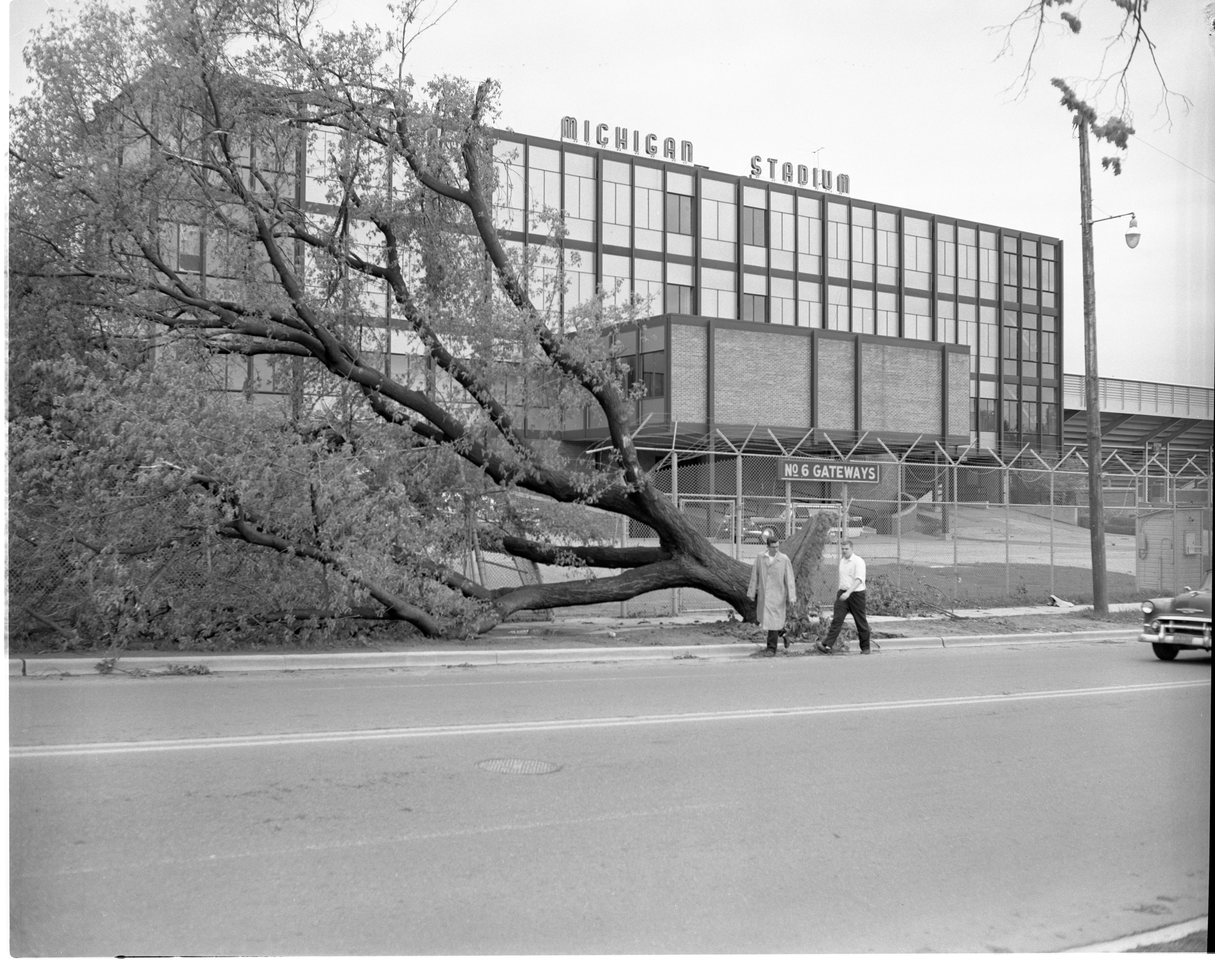Michigan Stadium Damaged After The Windstorm, May 1959 image