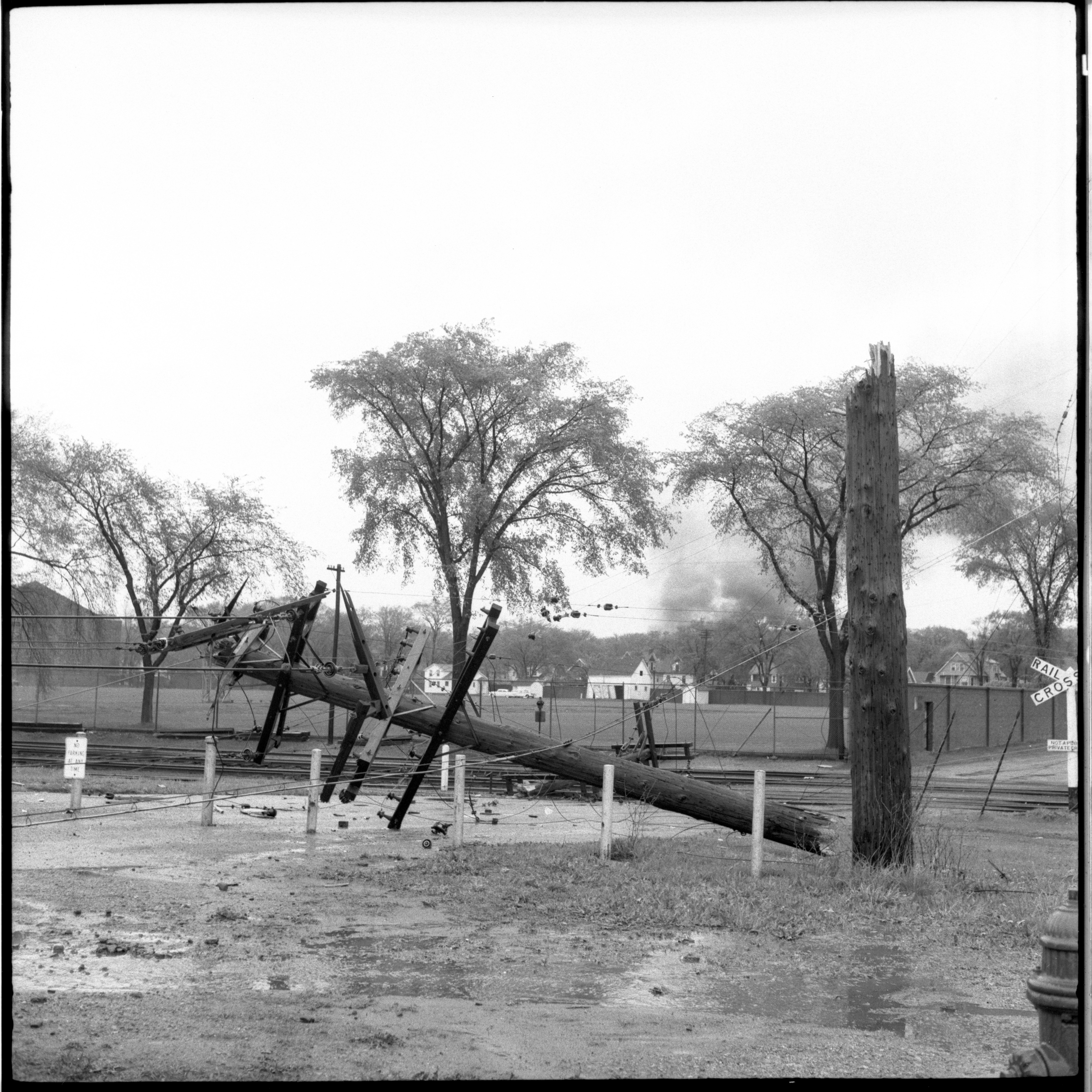 Utility Lines Near Ferry Field Downed During The Windstorm, May 1959 image