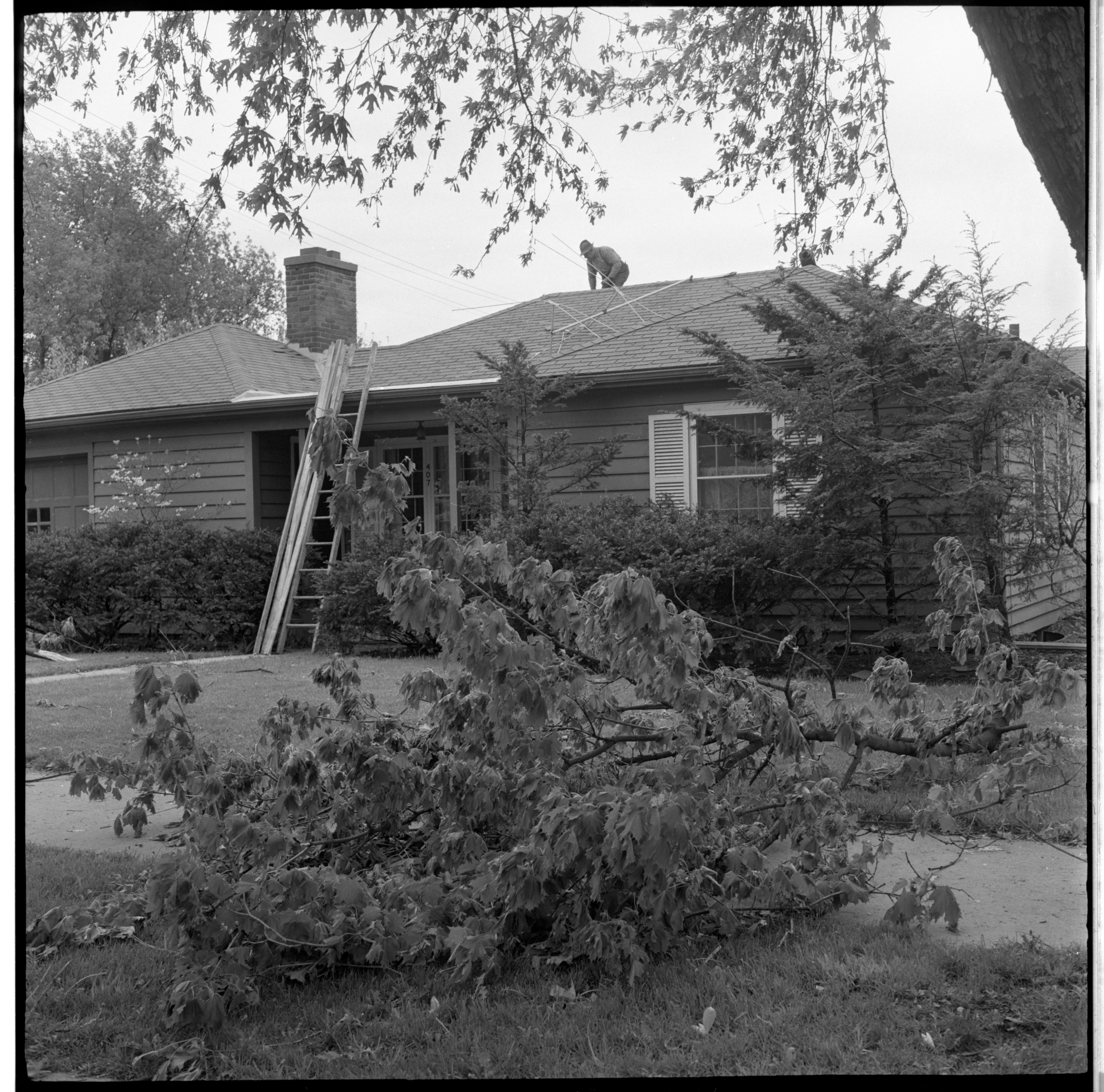 A Resident Inspects His Home For Damage Caused By The Windstorm, May 1959 image