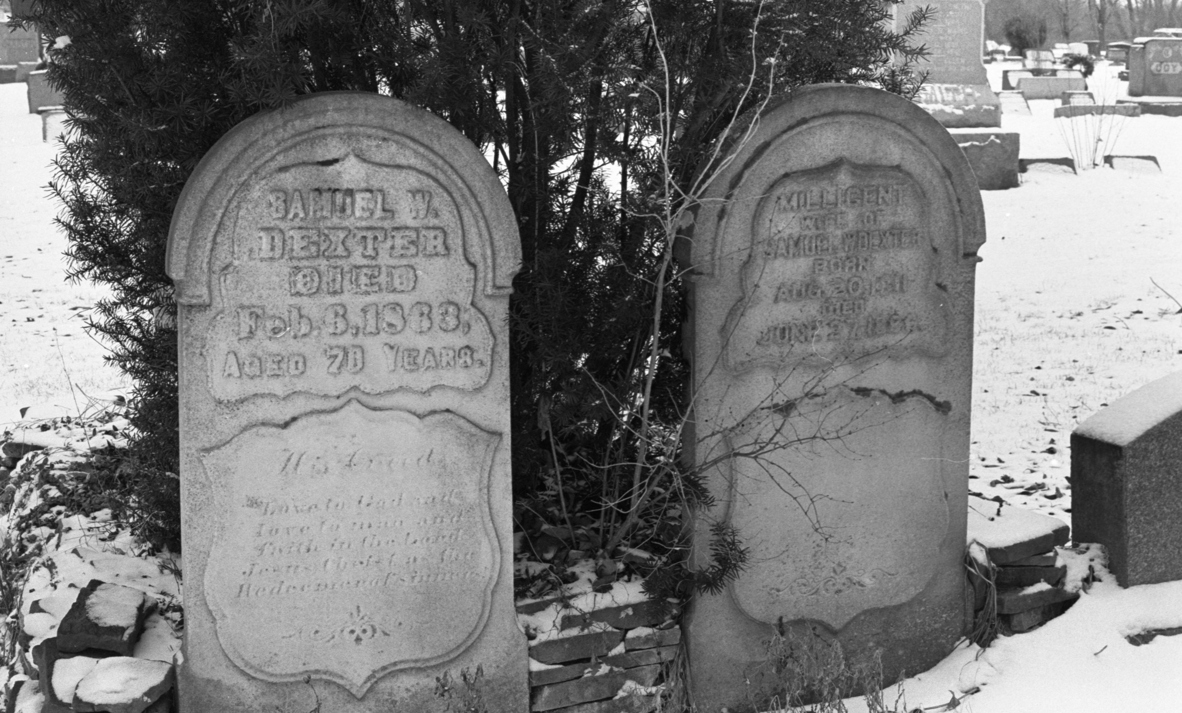The Graves Of Samuel W. Dexter, Founder Of The Town, & His Wife Millicent, At Forest Lawn Cemetery, March 1980 image