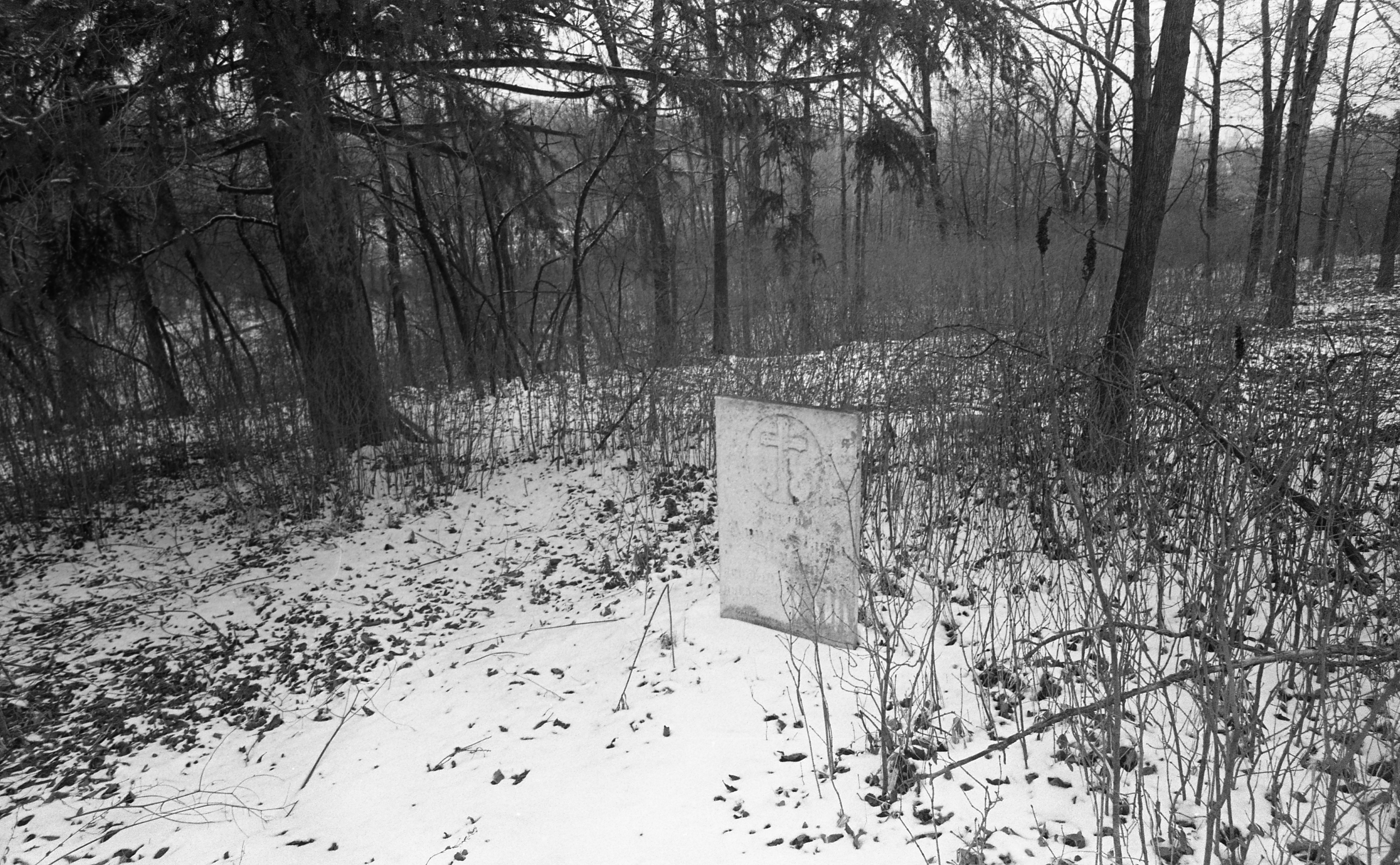 Grave Of Anastasia Dettling - Schneider Road Cemetery, Freedom Township, March 1980 image