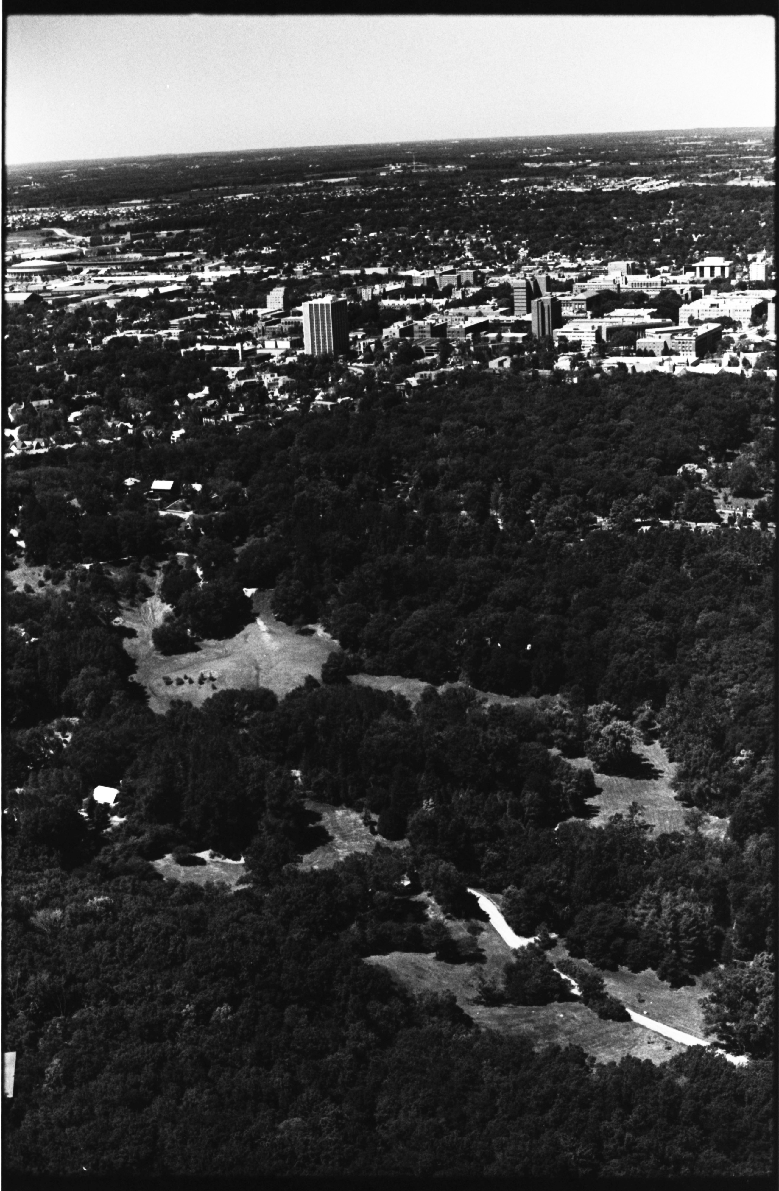 Aerial Photograph of Nichols Arboretum and Forest Hill Cemetery, July 1977 image