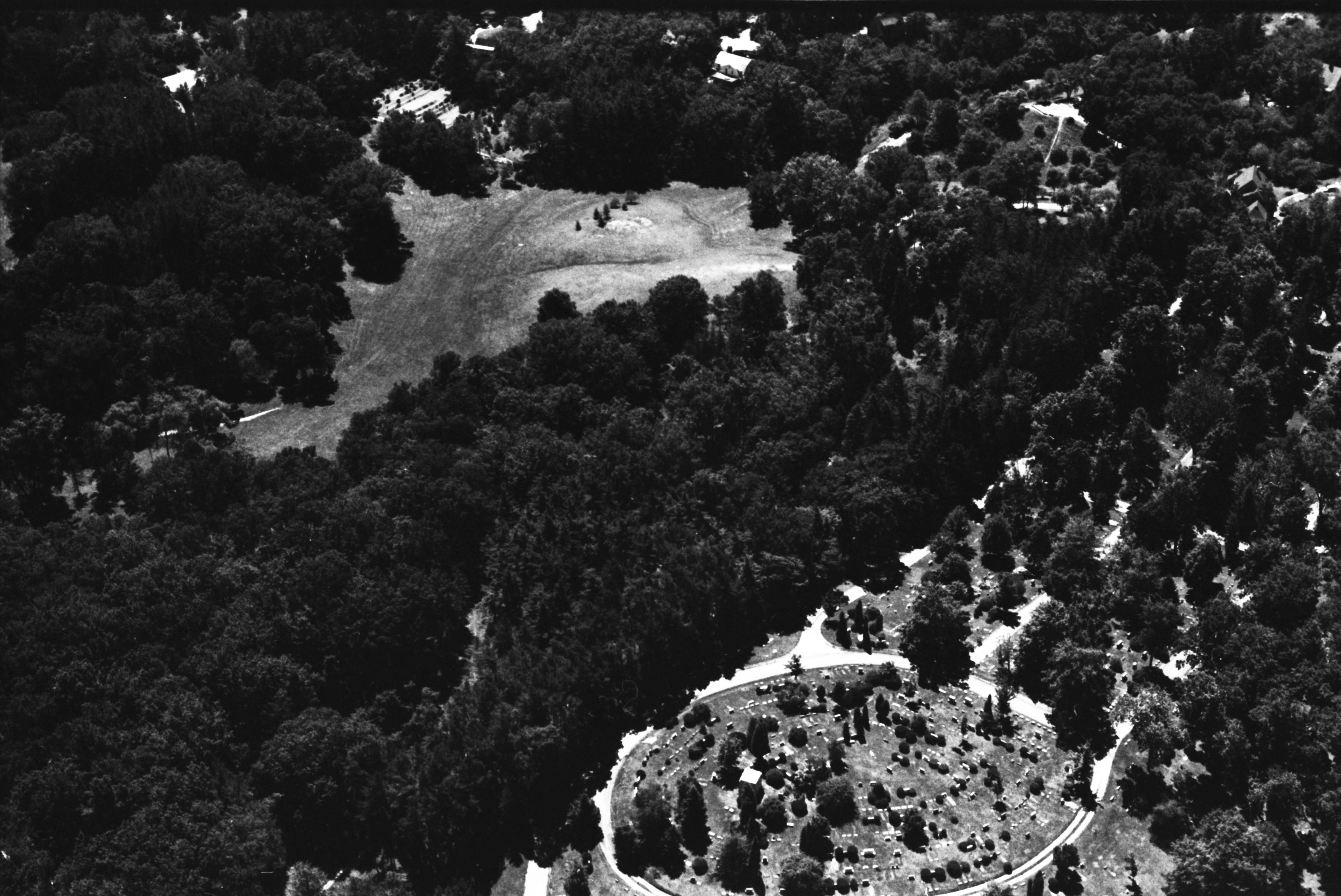 Aerial Photograph of Forest Hill Cemetery, July 1977 image