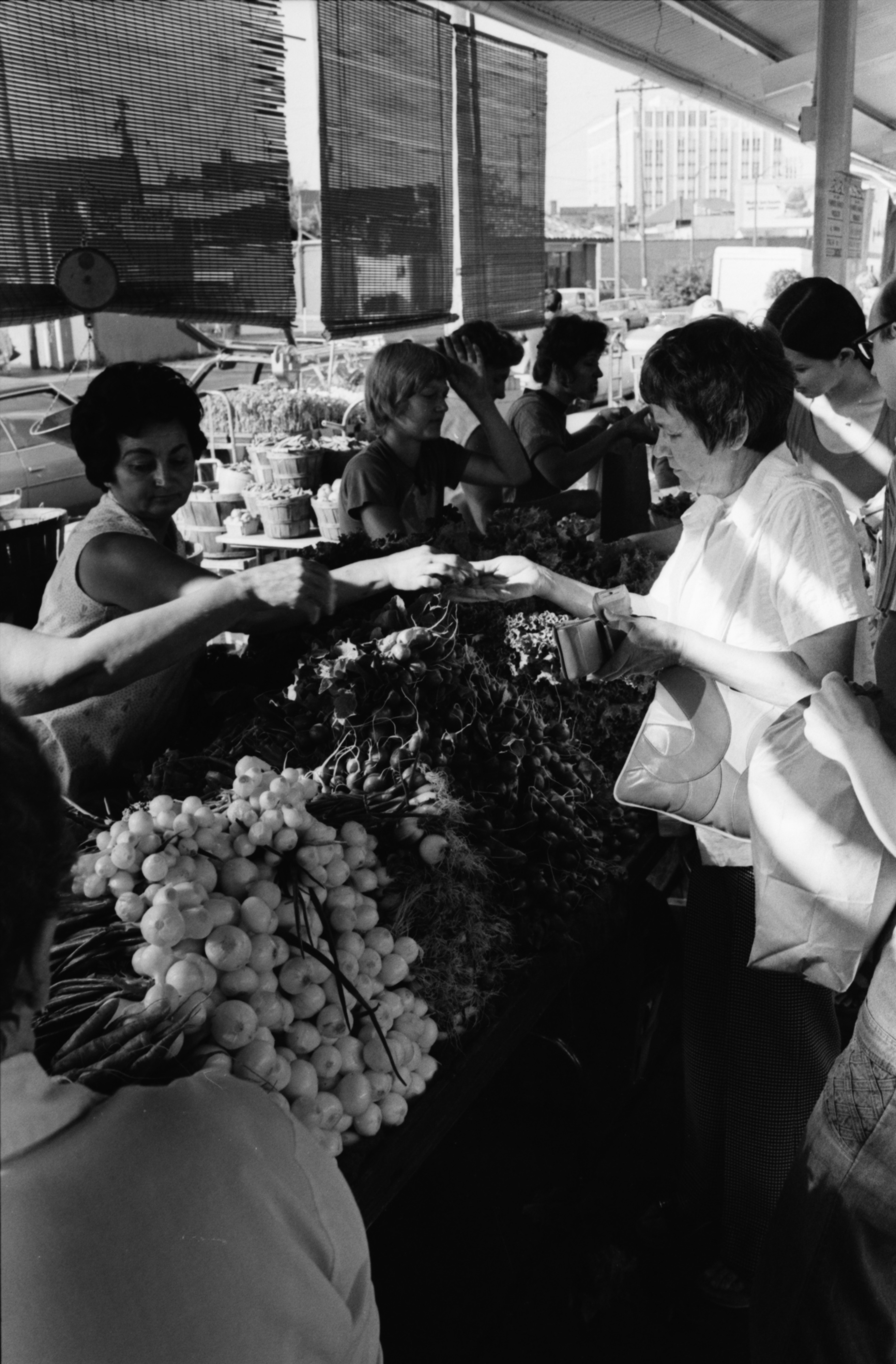 Views from the Ann Arbor Farmers Market, July 1977 image