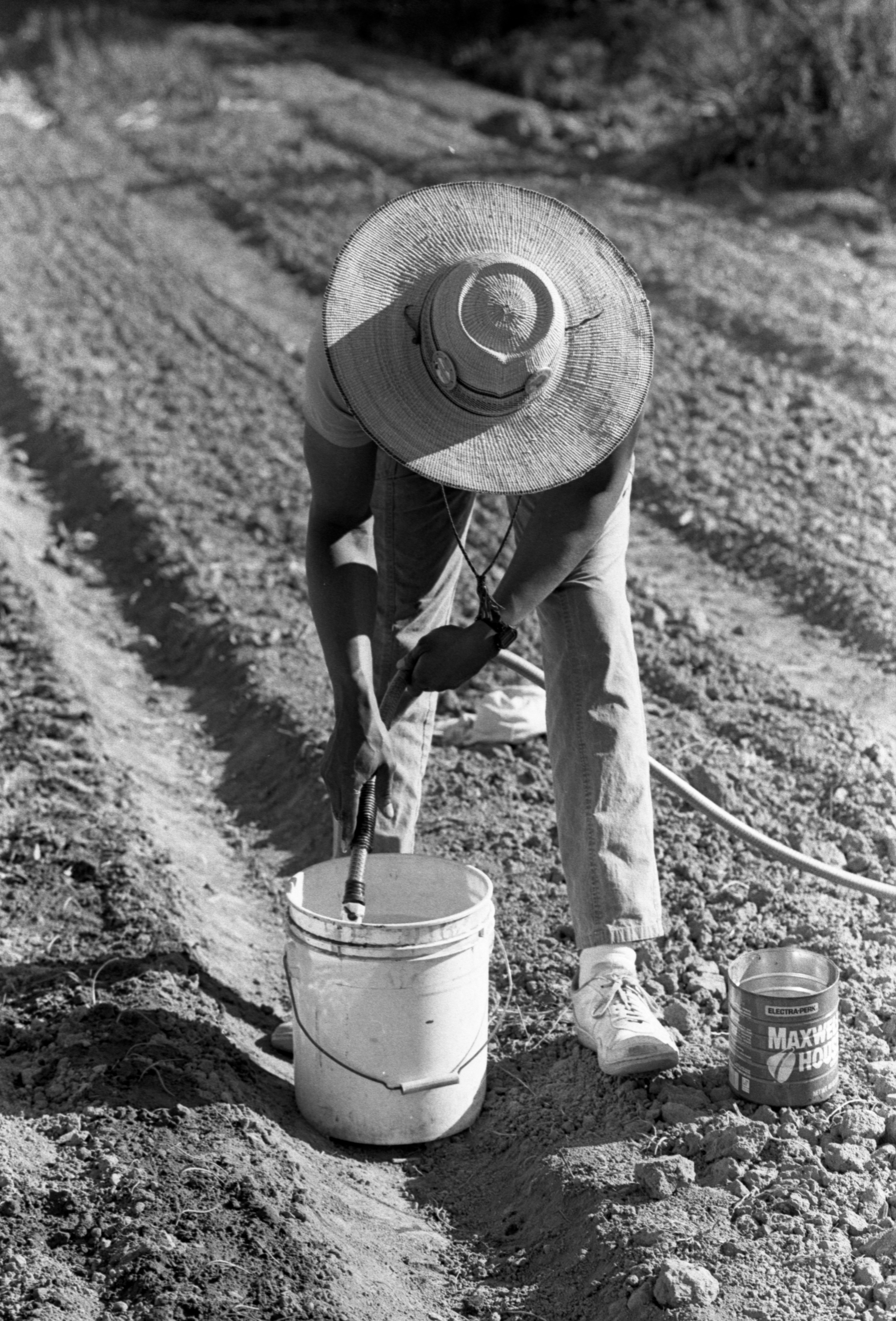 Filling Buckets Of Water At Community Farm, May 1988 image
