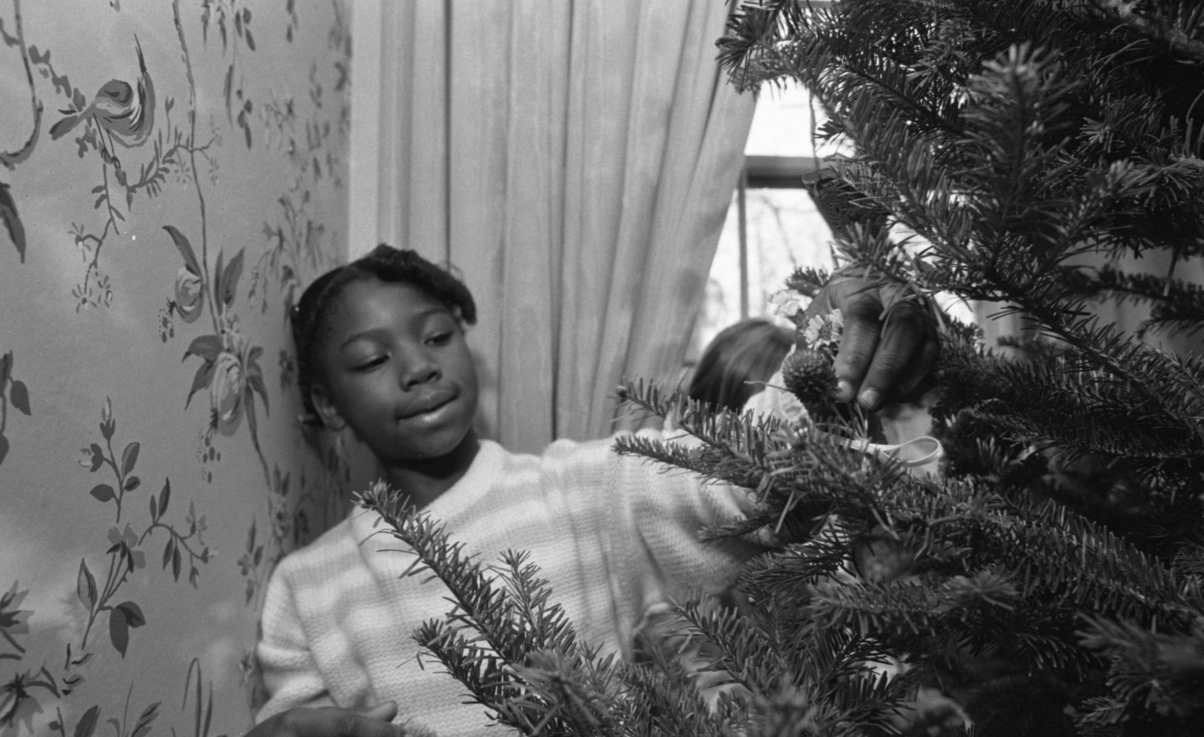 Elizabeth Hall Decorates A Christmas Tree At Cobblestone Farm, November 1989 image
