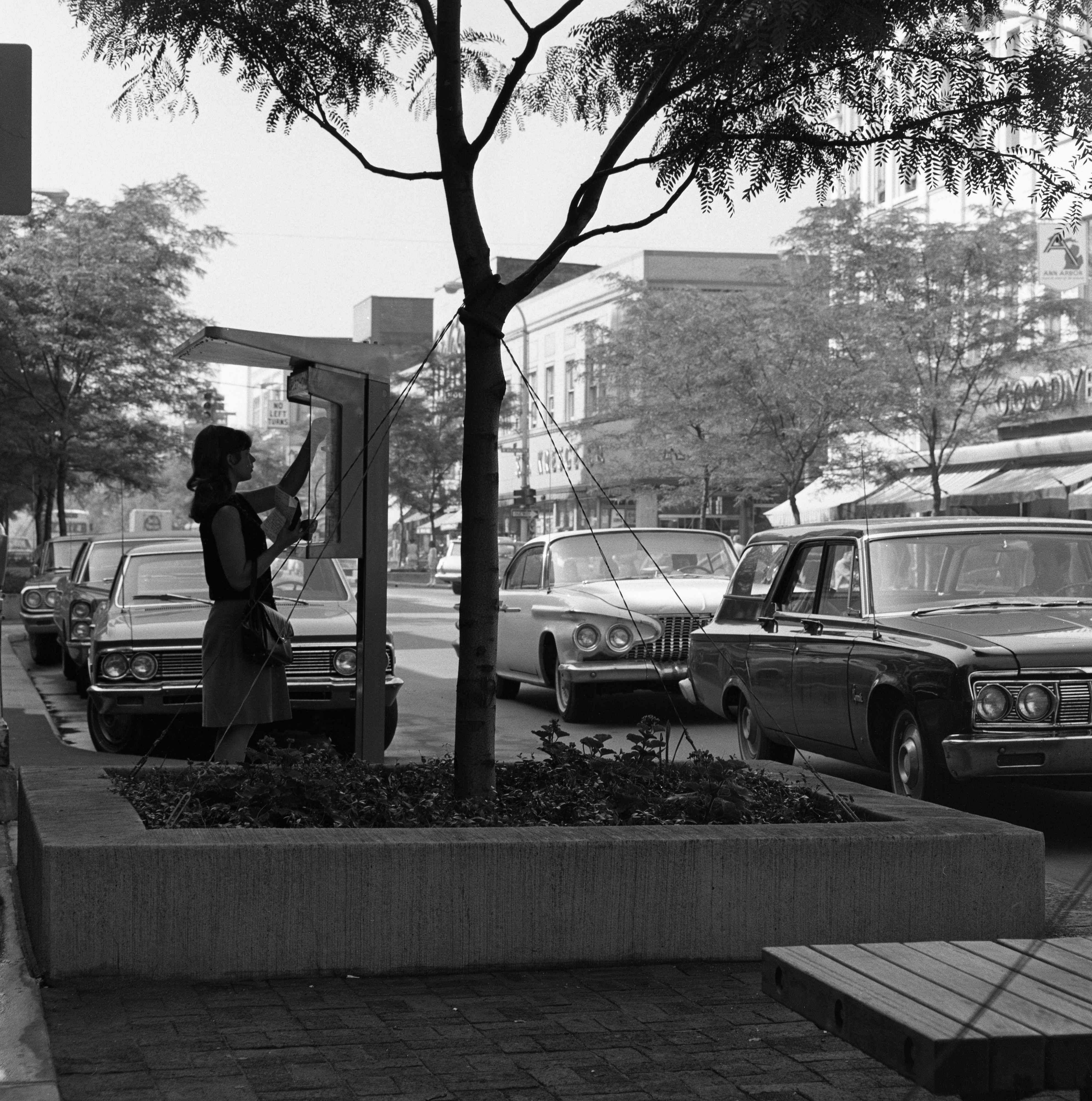 Actual Phone Booth on the Elizabeth R. Dean Promenade In Downtown Ann Arbor, July 1967 image