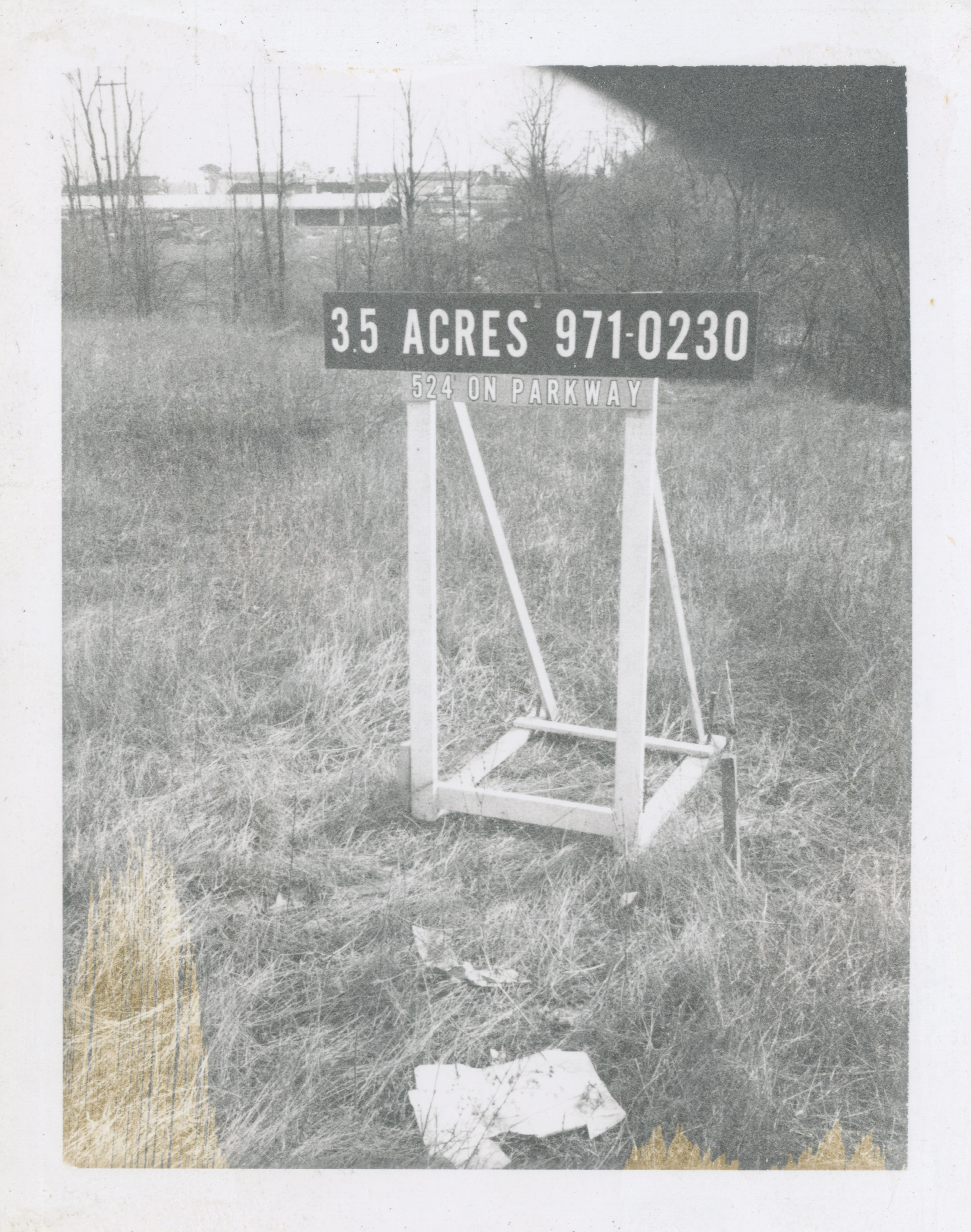 35 Acres (Pittsfield Village), 1974 image