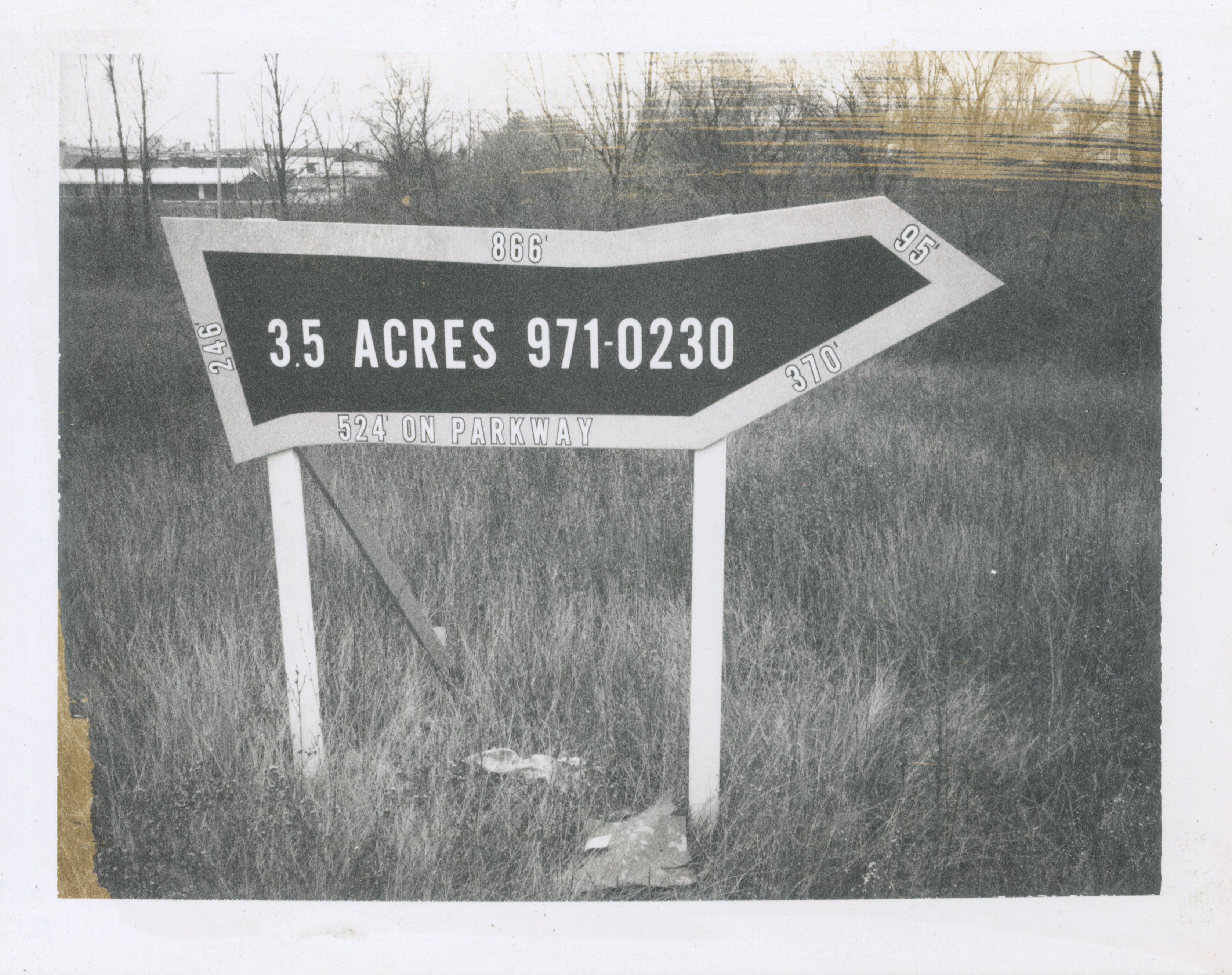 35 Acres (Pittsfield Village), 1973 image