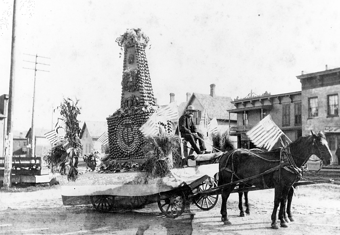 Parade float, 1895 image