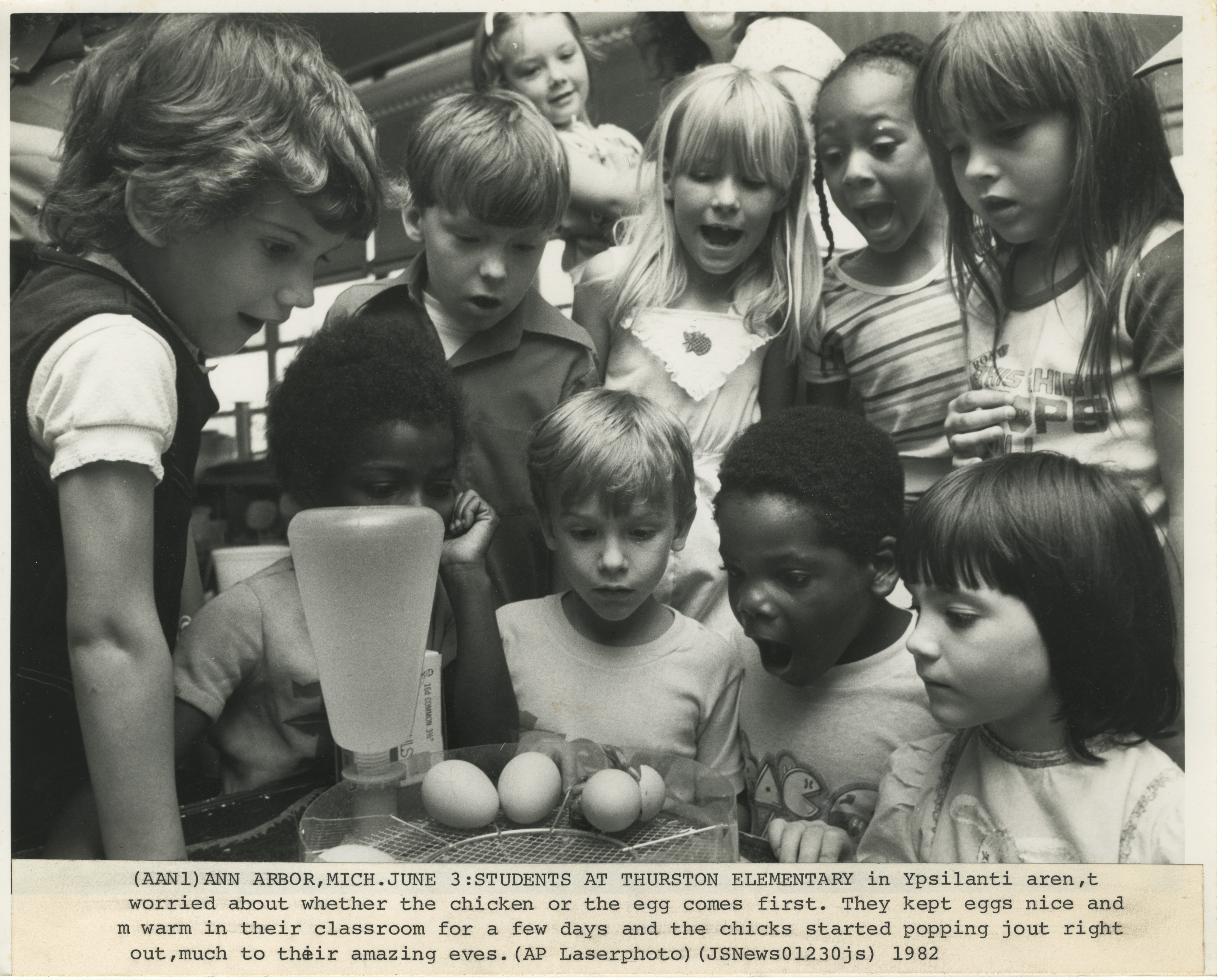 Thurston Elementary Students Watching Eggs Hatch, June 1982 image