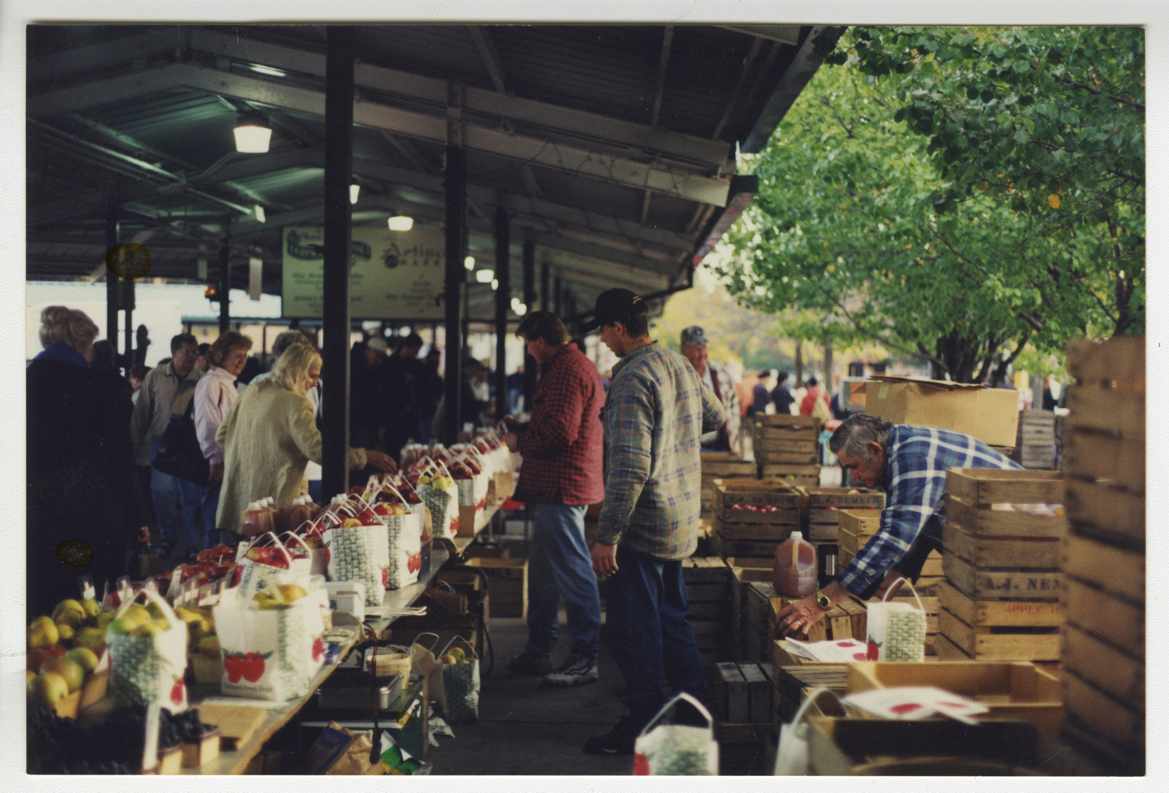 Nemeth Orchards Produce at the Ann Arbor Farmers Market, October 1997 image