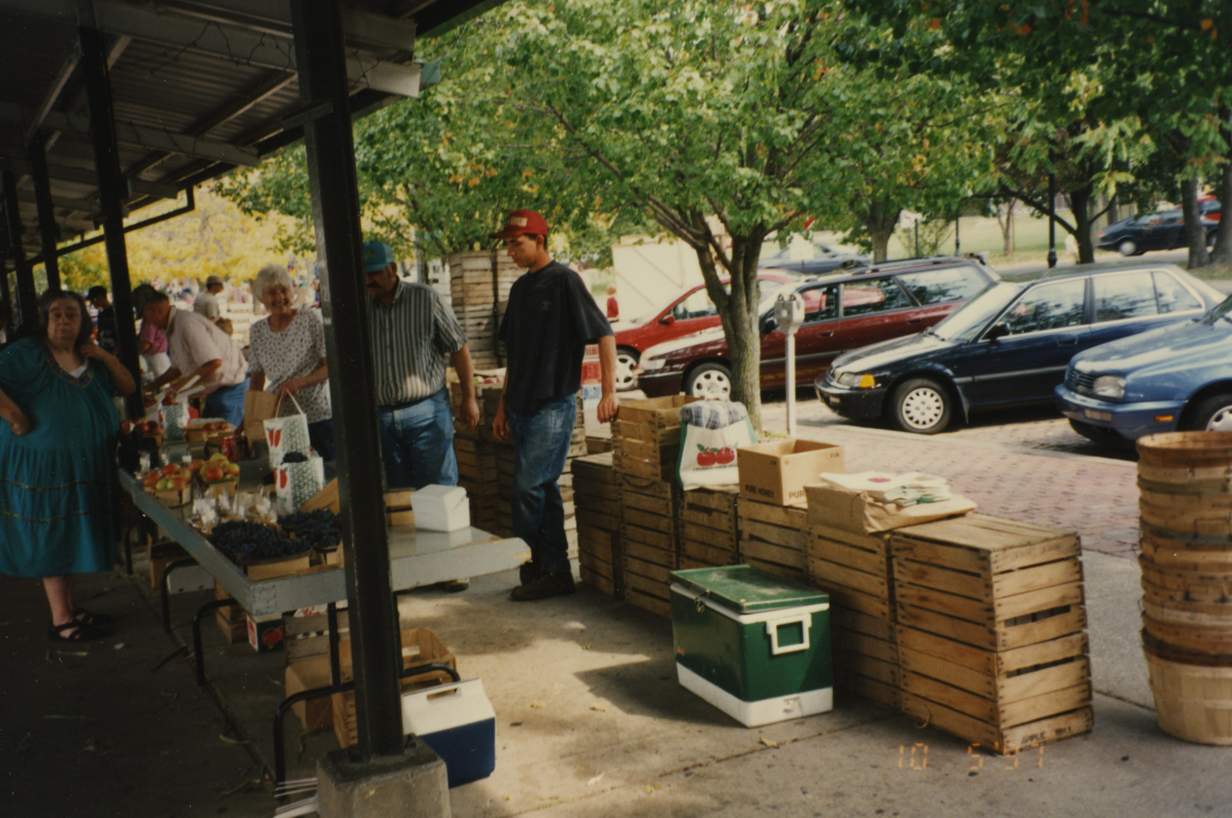 Nemeth Orchard, October 1997 image