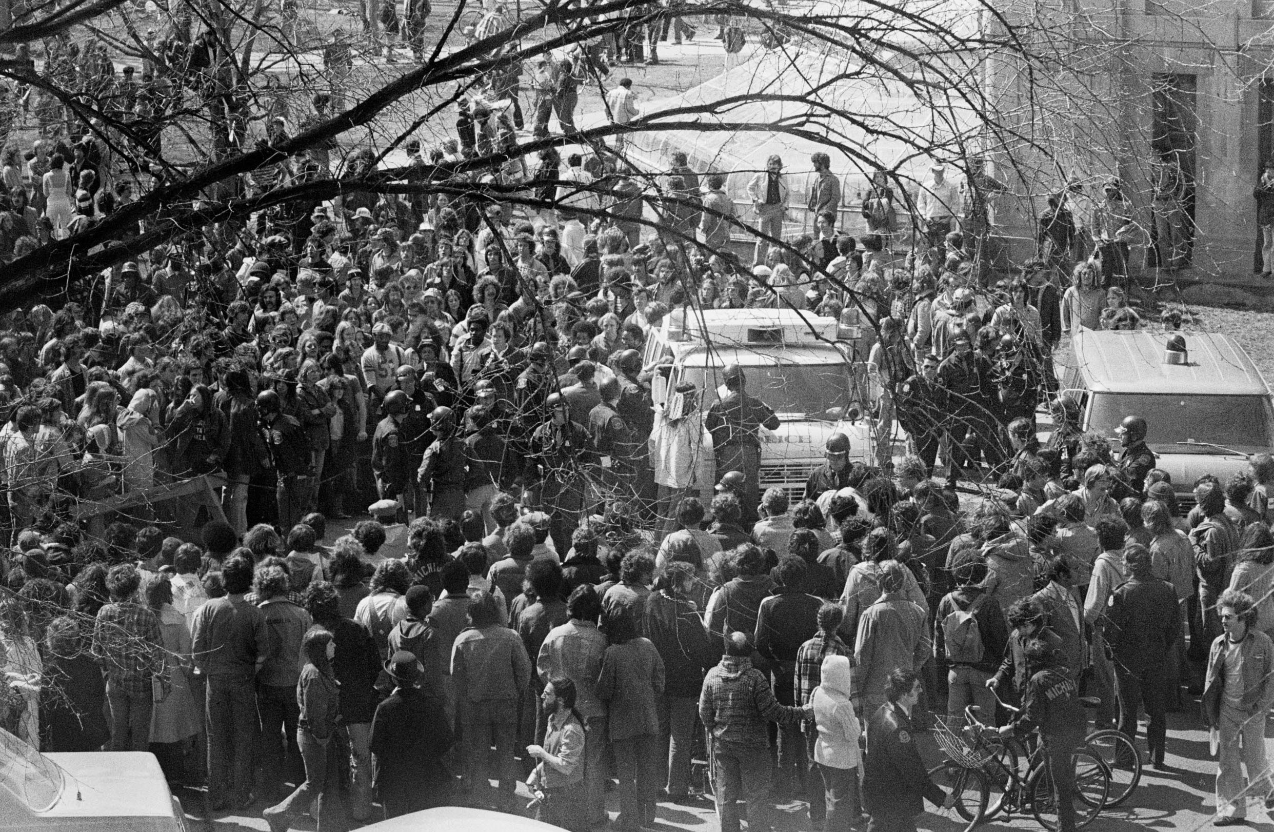 Ann Arbor Hash Bash, April 1978 image