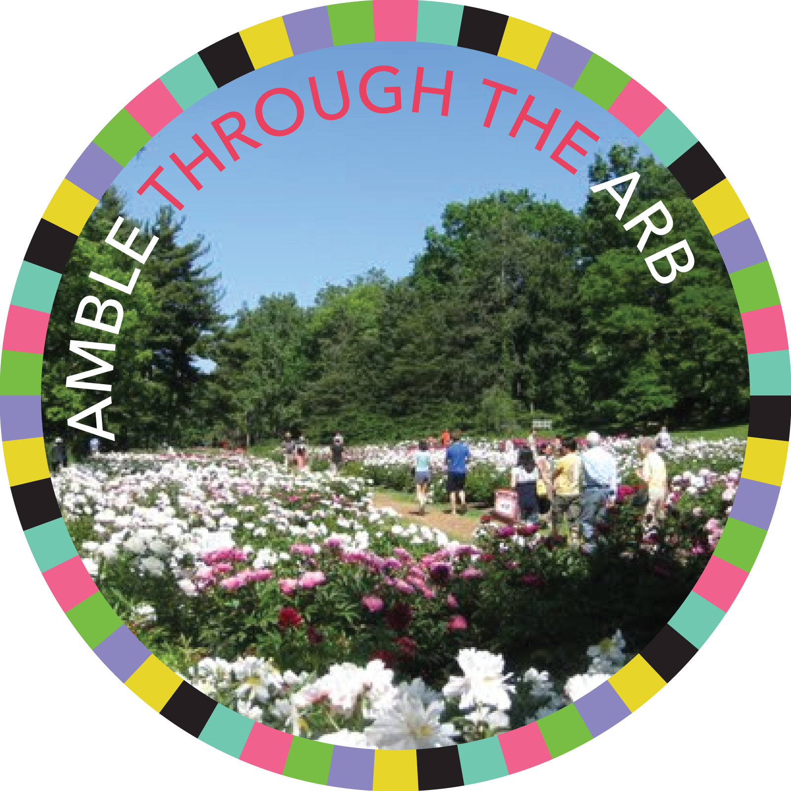 Amble through the Arb badge image
