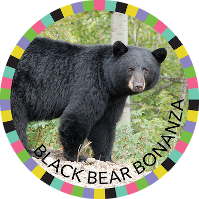 Black Bear Bonanza badge image