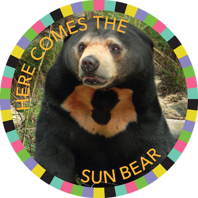 Here Comes the Sun Bear