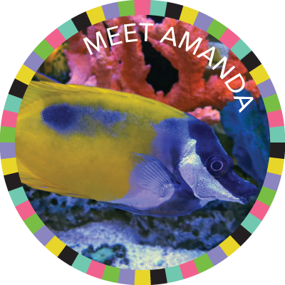 Meet Amanda!  badge image