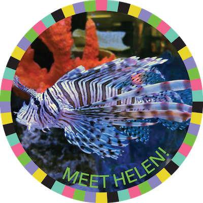 Meet Helen badge image