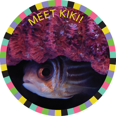 Meet Kiki!  badge image