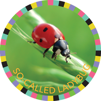 "So-Called ""Ladybugs"" image"